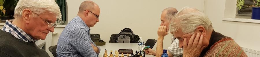 3. turnaj Koně